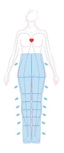 Wirkt gleichzeitig in drei Bereichen: Muskeln, Zellgewebe und Kreislaufsystem.